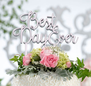 Best-Day-Ever-Wedding-Cake-Topper-Silver-m.jpg