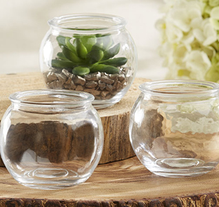 Glass-Terrarium-Bowl-M.jpg