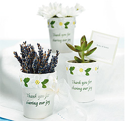 Mini Flower Pots White and Green Wedding Favors