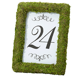 Moss-4-x-6-Table-Frame-m.jpg