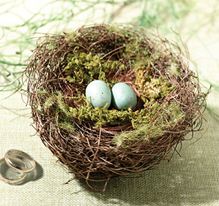 Moss-Bird-Nest-Ring-Holder-m.jpg