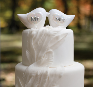 Love bird wedding theme love bird themed wedding porcelain mr mrs love bird cake topper junglespirit Gallery