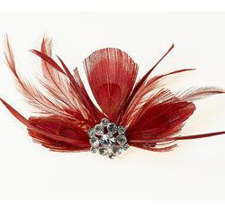 Red Feather Hair Clip