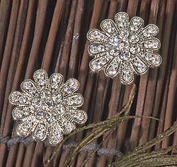 Rhinestone Clear Crystals/Rhinestones Cluster Posts Stud Earrings