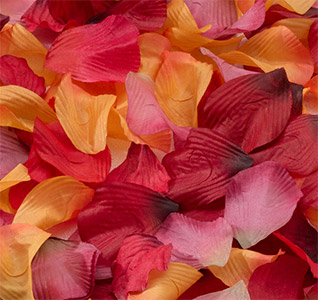 Rose-Petals-Fall-Assorted-m.jpg