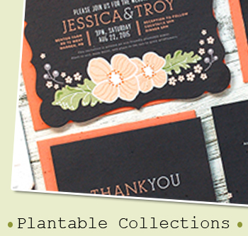 Plantable Stationery Collections