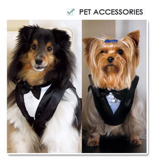 Pet Wedding Accessories