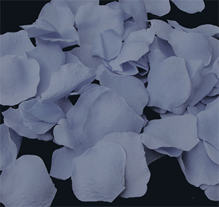 Flower petals rose petals light blue rose petals mightylinksfo