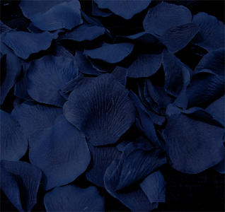 navy-blue-rose-petals-m.jpg