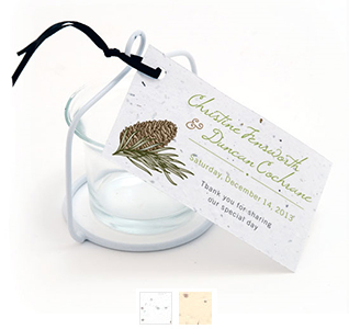 pinecone-plantable-wedding-favor-tags-m.jpg