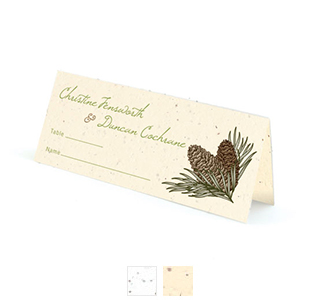 pinecone-plantable-wedding-place-card-m1.jpg