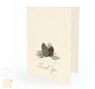 pinecone-plantable-wedding-thankyou-card-m1.jpg