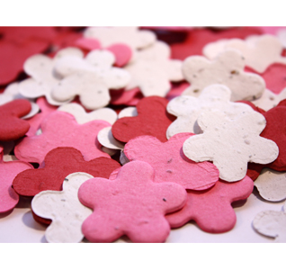 true-love-valentine-colors-plantable-confetti-set-flowers-m.jpg